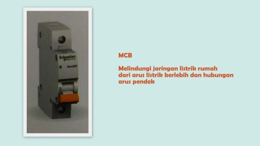 prenagen-mcb